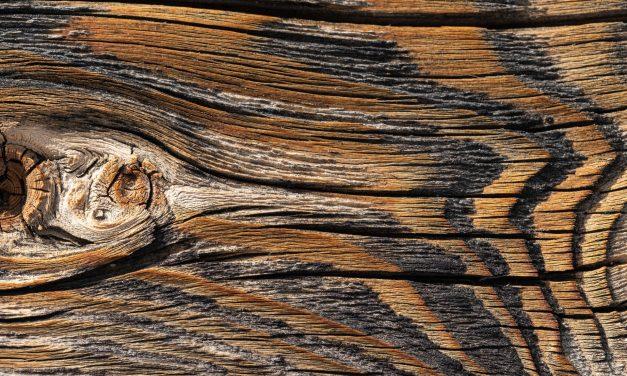 Sådan passer du godt på din terrasse med den helt rigtige træbeskyttelse